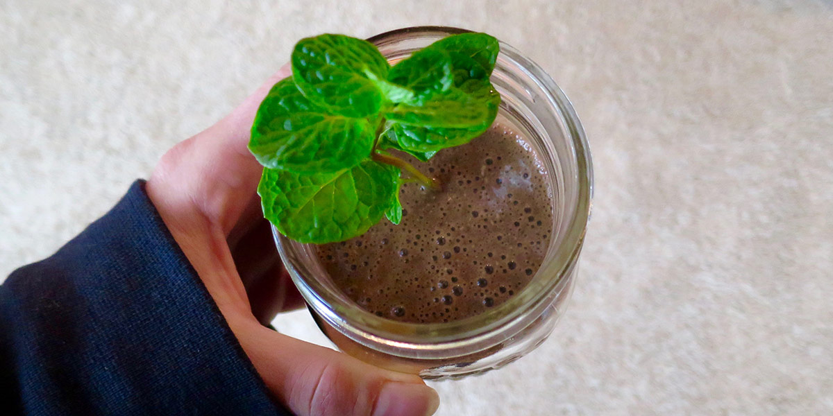 chocolate-coconut-mint-smoothie